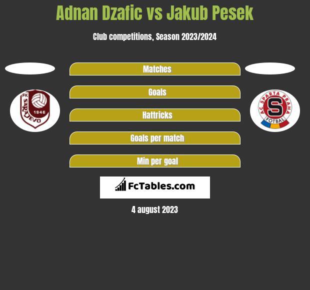 Adnan Dzafic vs Jakub Pesek h2h player stats