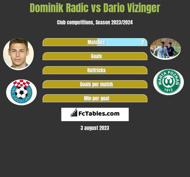 Dominik Radic vs Dario Vizinger h2h player stats