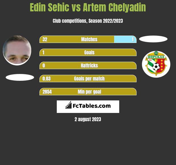 Edin Sehic vs Artem Chelyadin infographic
