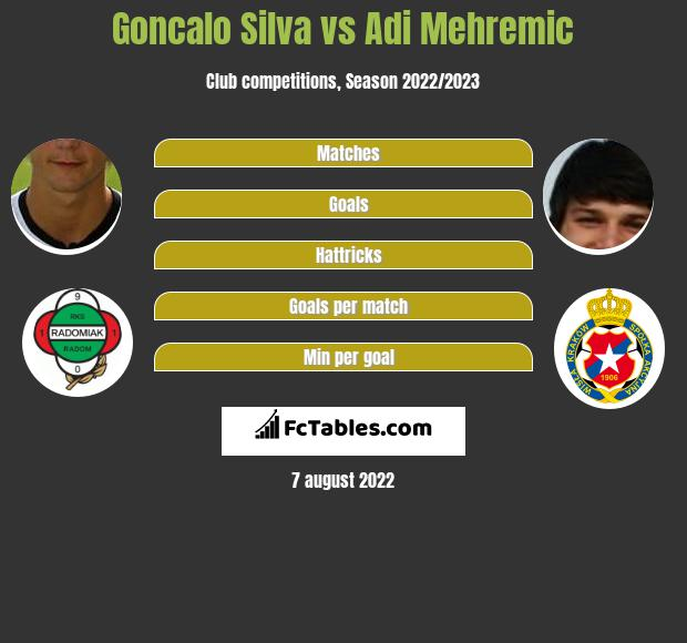 Goncalo Silva infographic statistics for Aves