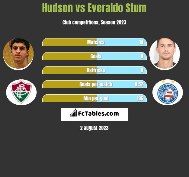 Hudson vs Everaldo Stum infographic