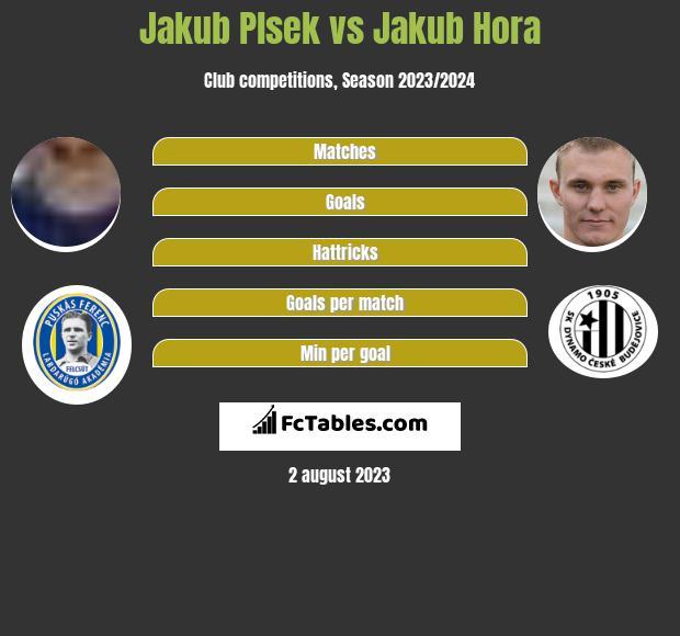 Jakub Plsek vs Jakub Hora h2h player stats