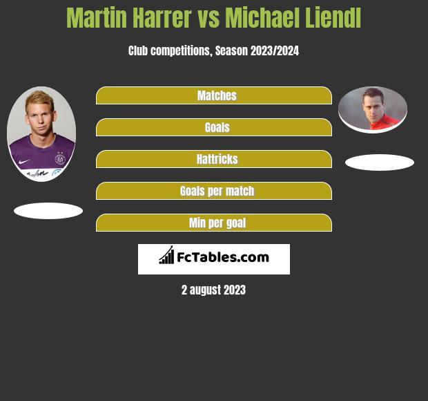 Martin Harrer vs Michael Liendl h2h player stats