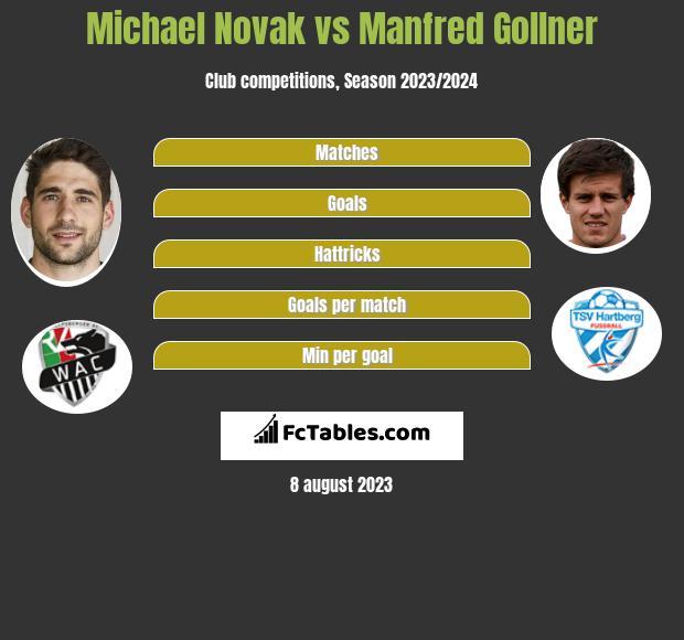 Michael Novak vs Manfred Gollner infographic