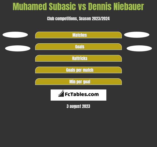 Muhamed Subasic vs Dennis Niebauer h2h player stats
