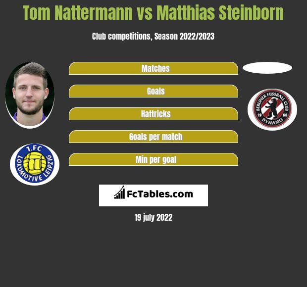 Tom Nattermann vs Matthias Steinborn h2h player stats