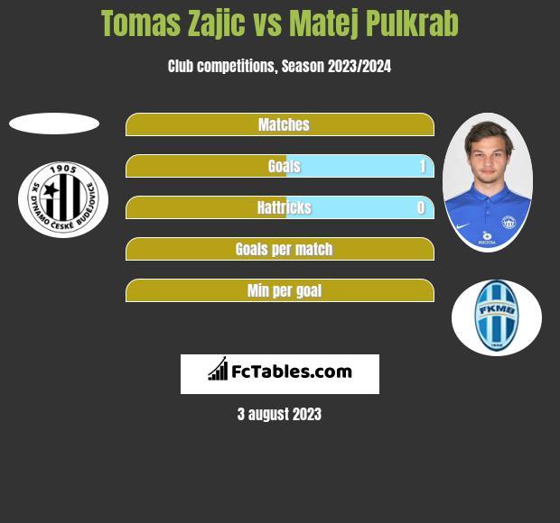 Tomas Zajic vs Matej Pulkrab h2h player stats
