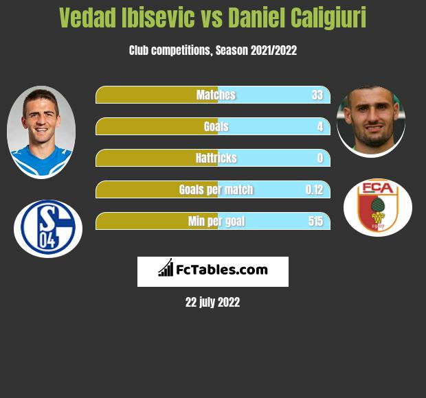 Vedad Ibisevic vs Daniel Caligiuri h2h player stats