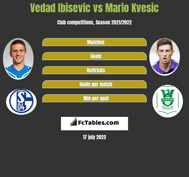 Vedad Ibisevic vs Mario Kvesic h2h player stats