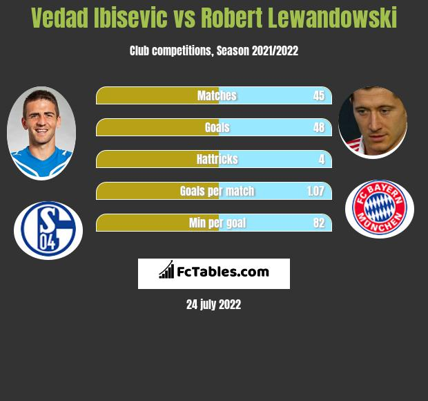 Vedad Ibisevic infographic statistics for Hertha Berlin