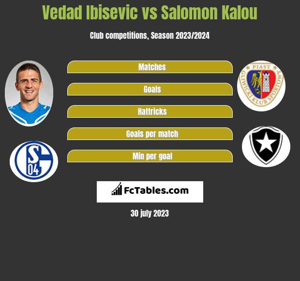 Vedad Ibisevic vs Salomon Kalou infographic