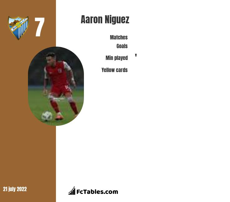Aaron Niguez infographic