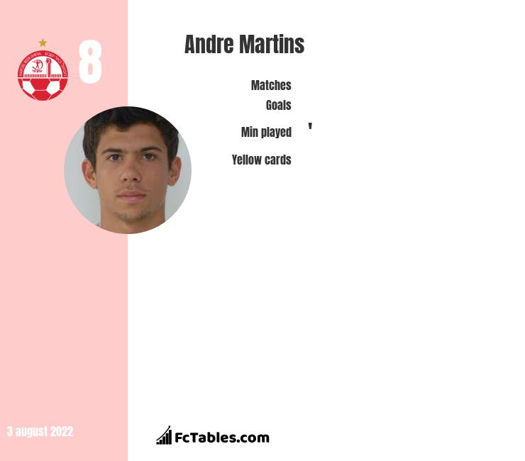 Andre Martins infographic