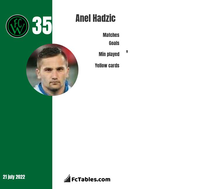 Anel Hadzic infographic statistics for Videoton FC