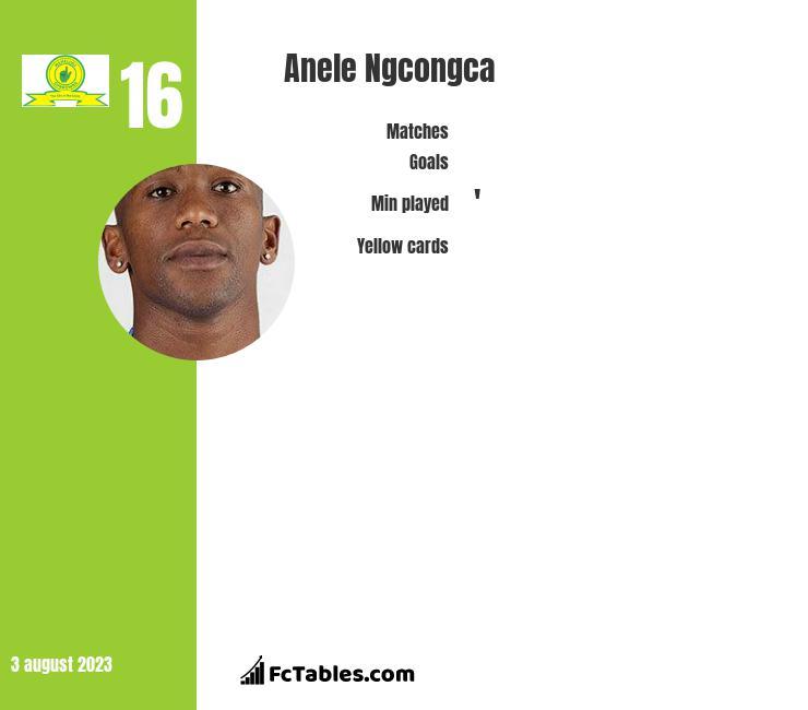 Anele Ngcongca infographic