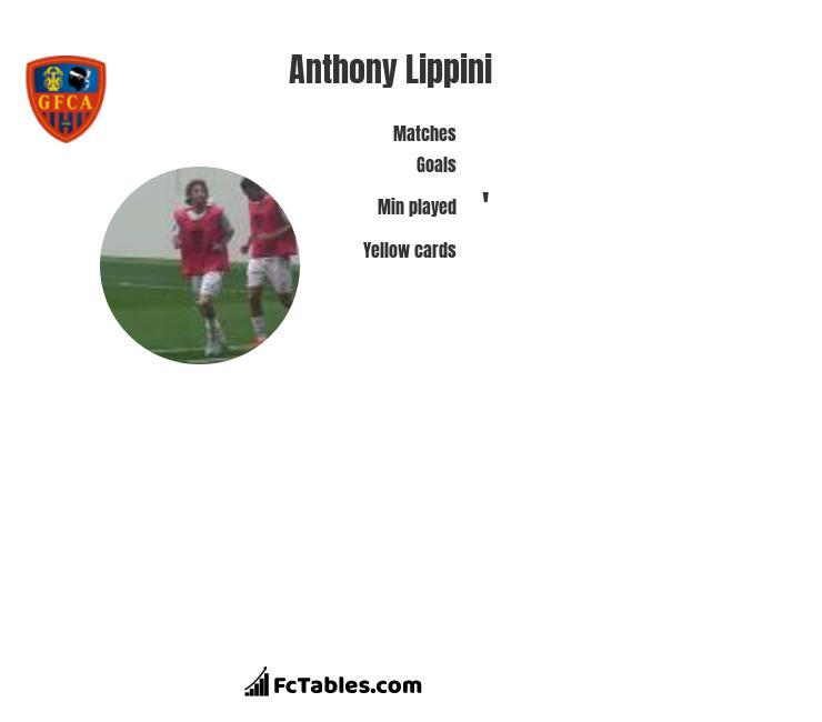 Anthony Lippini infographic