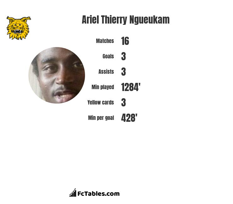 Ariel Thierry Ngueukam infographic