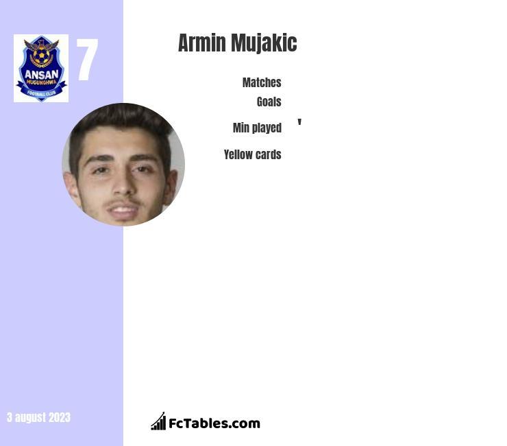 Armin Mujakic infographic