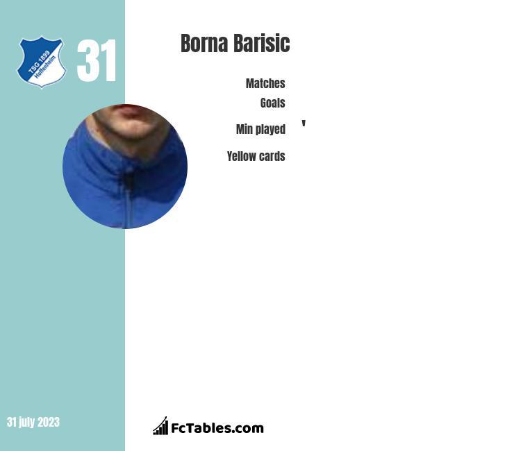Borna Barisic infographic