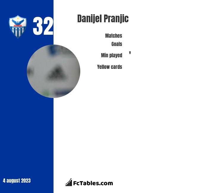 Danijel Pranjic infographic