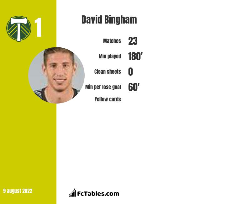 David Bingham infographic statistics for LA Galaxy
