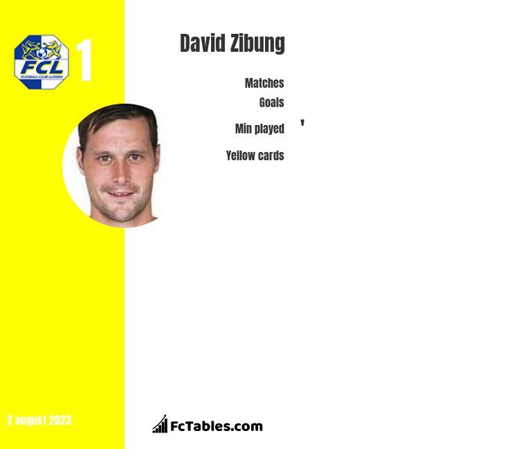David Zibung infographic