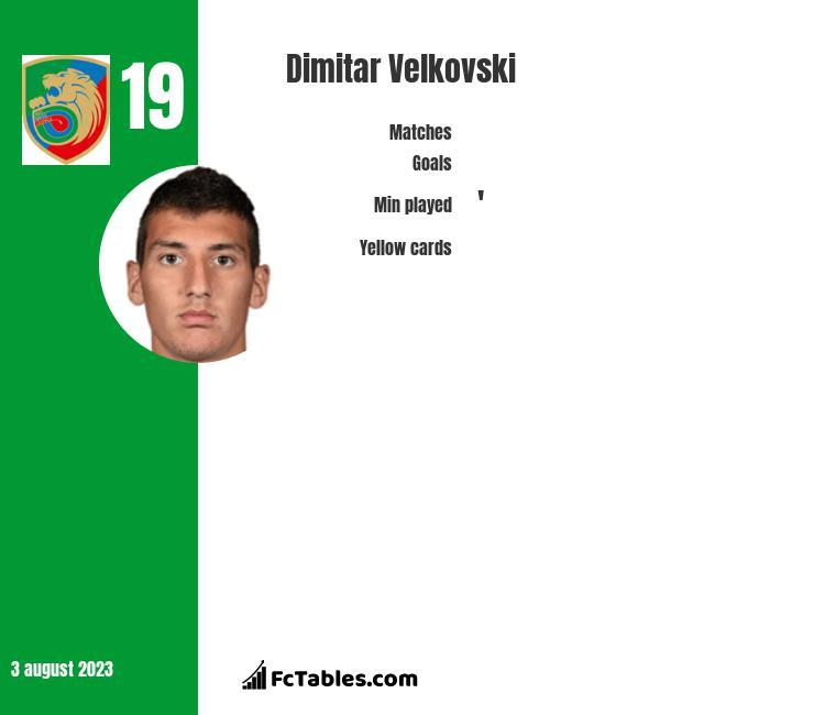 Dimitar Velkovski infographic