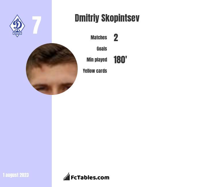 Dmitriy Skopintsev infographic