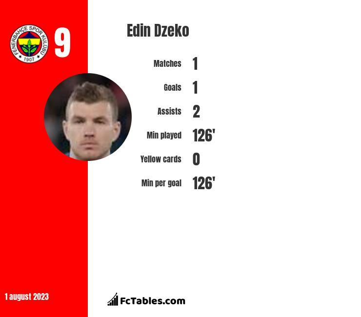 Edin Dzeko infographic