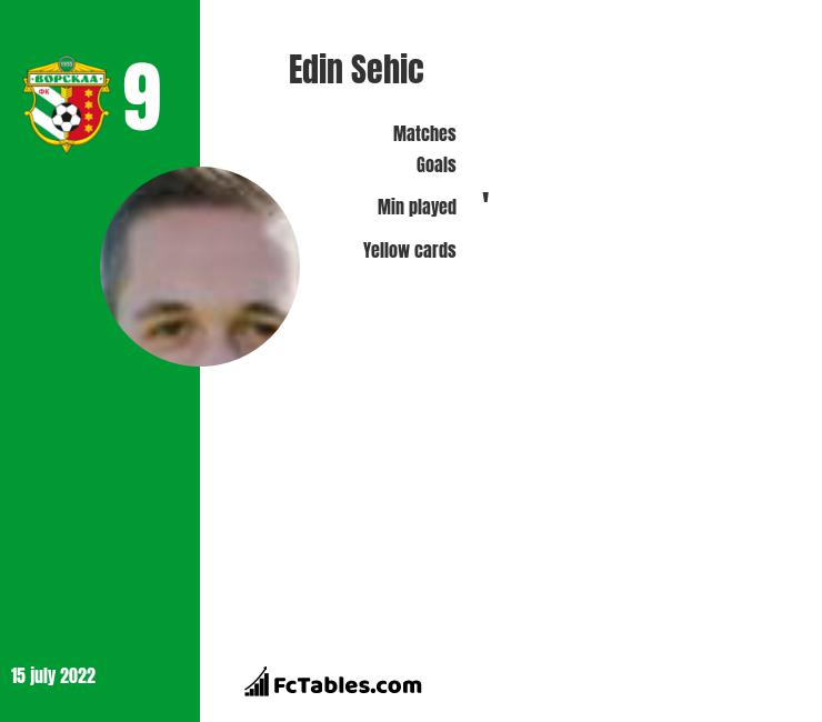 Edin Sehic infographic
