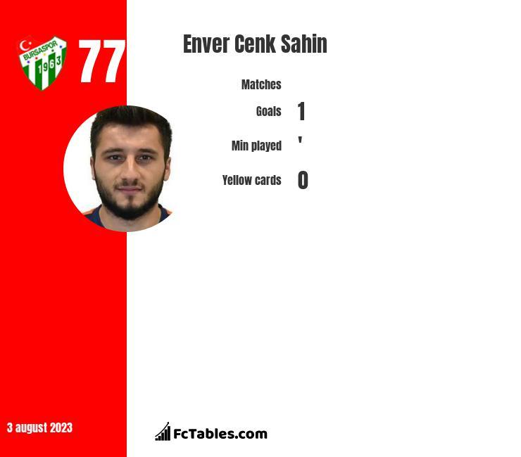 Enver Cenk Sahin infographic