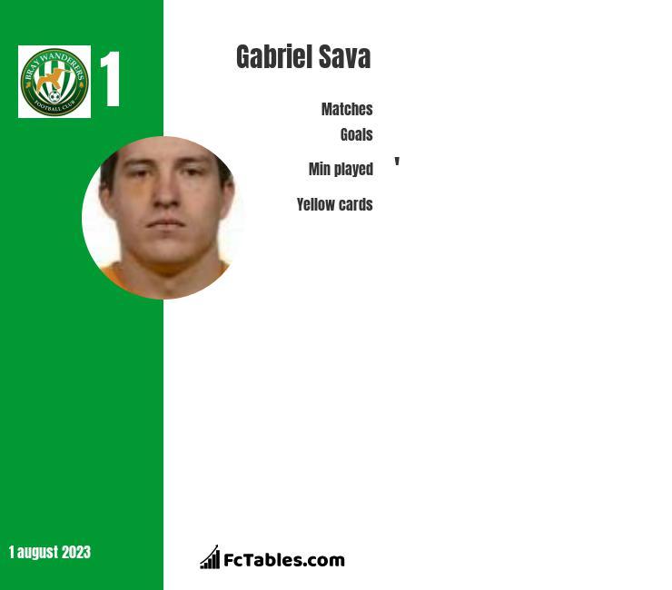 Gabriel Sava infographic