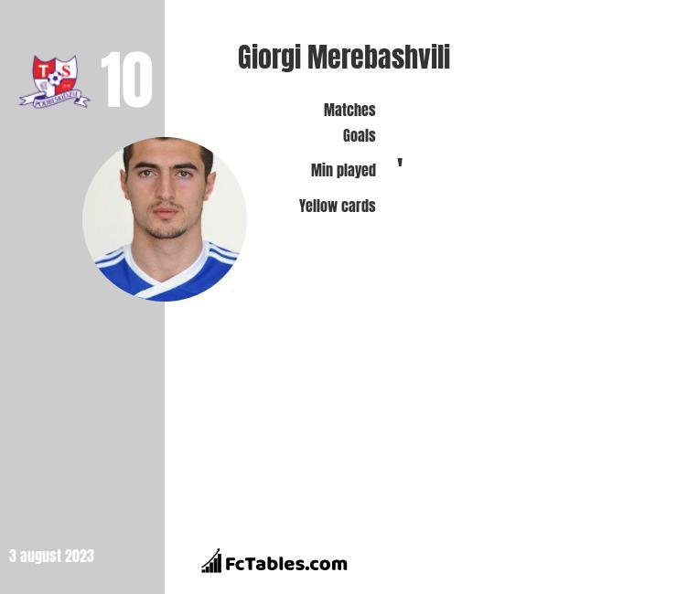 Giorgi Merebashvili infographic