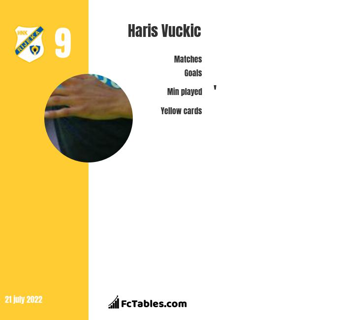 Haris Vuckic infographic