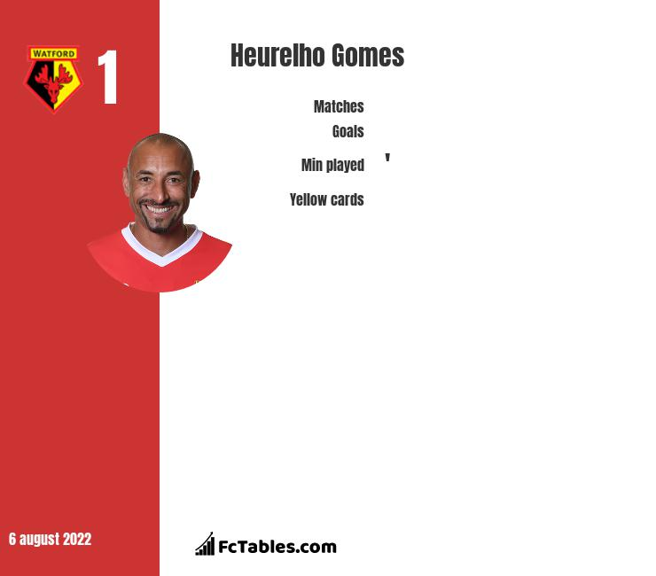 Heurelho Gomes infographic statistics for Watford