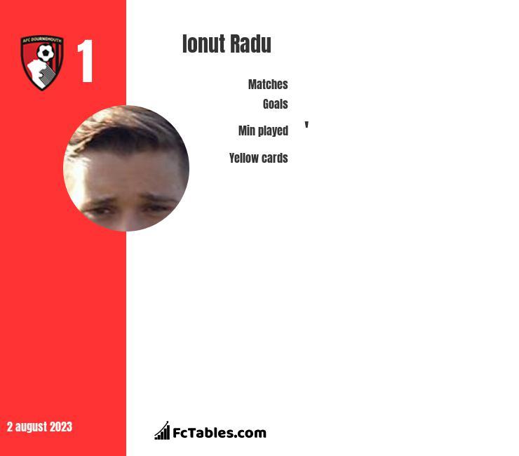 Ionut Radu infographic