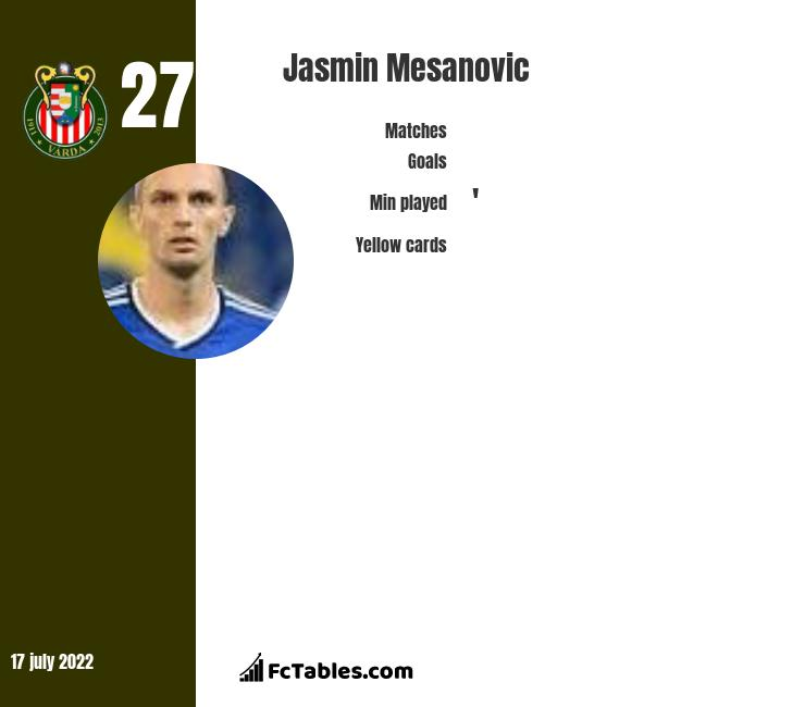Jasmin Mesanovic infographic