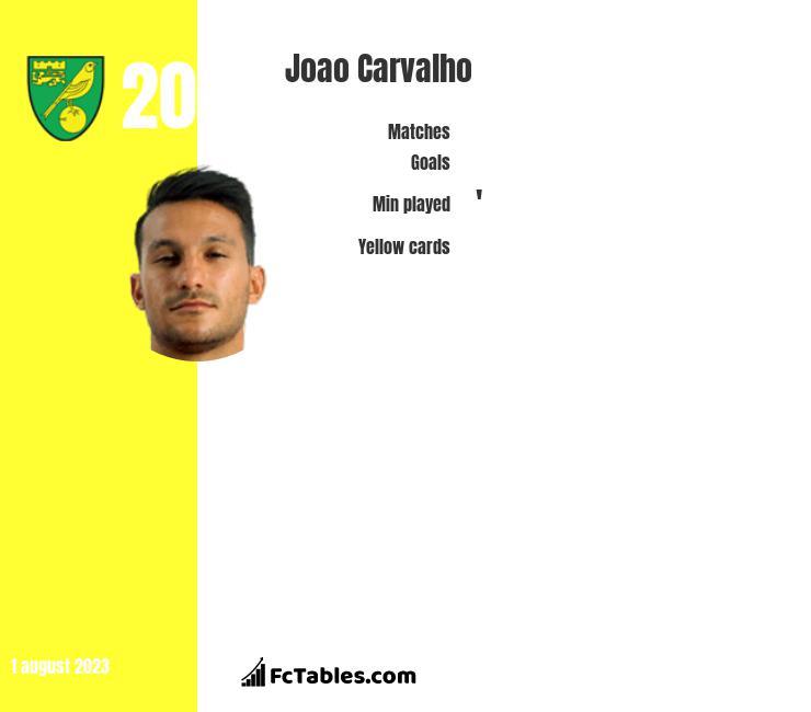 Joao Carvalho infographic