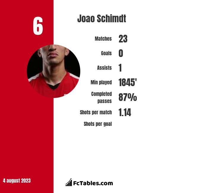Joao Schimdt infographic