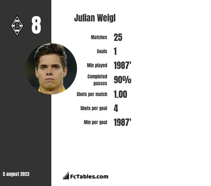 Julian Weigl infographic