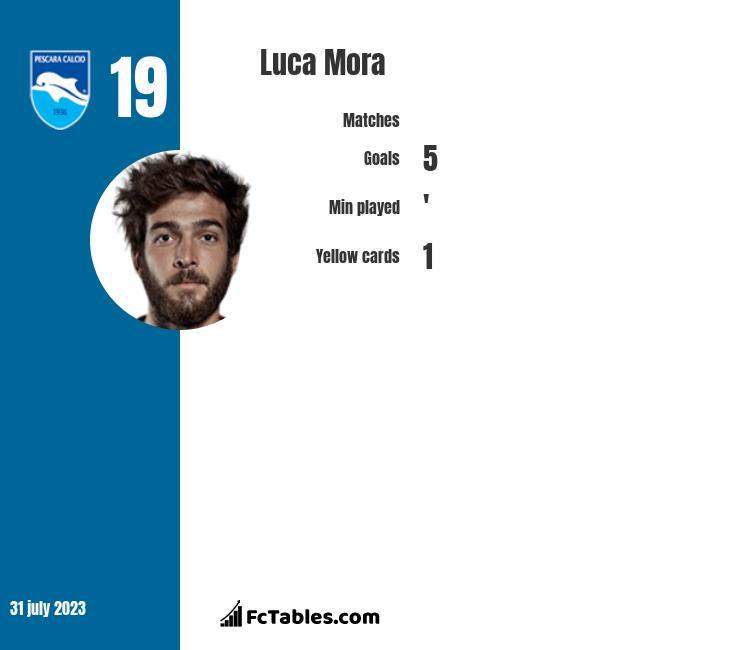 Luca Mora infographic
