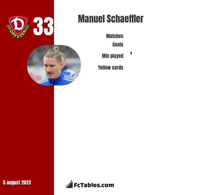 Manuel Schaeffler infographic