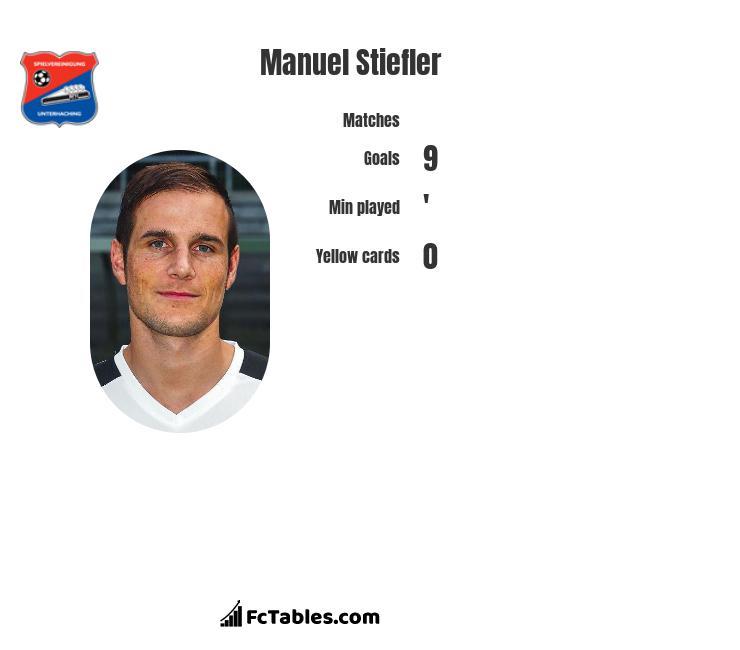 Manuel Stiefler infographic