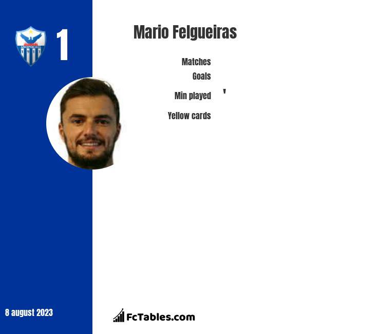 Mario Felgueiras infographic