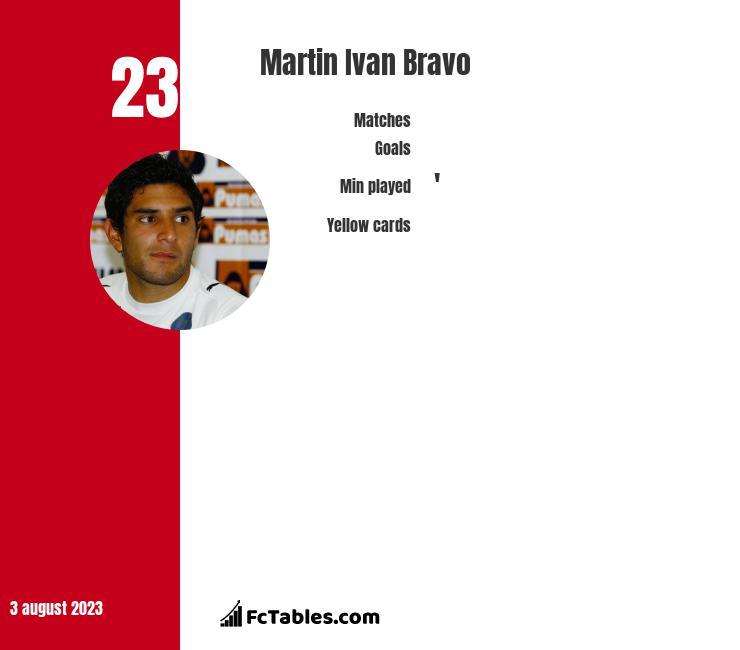 Martin Ivan Bravo infographic