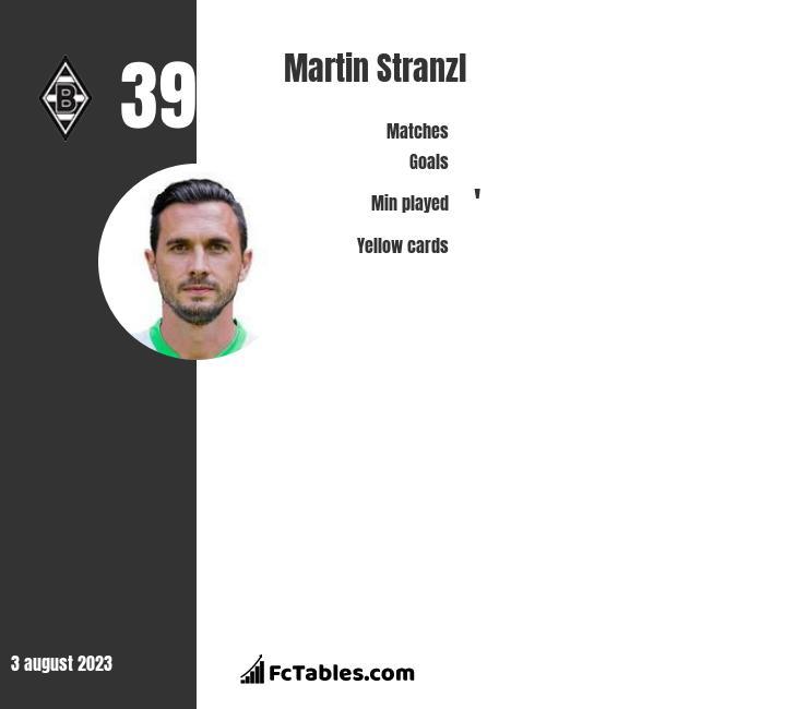Martin Stranzl infographic