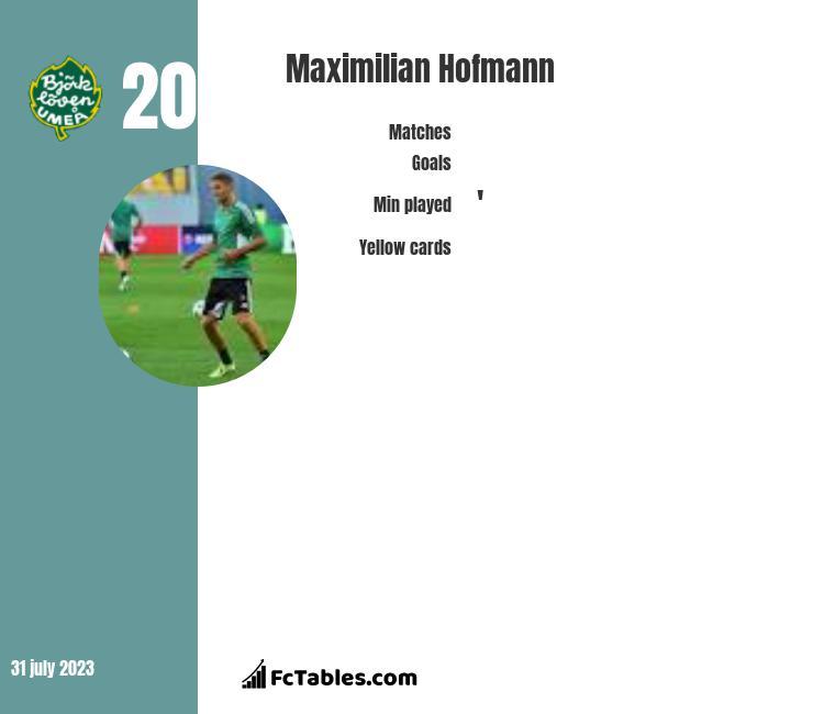 Maximilian Hofmann infographic