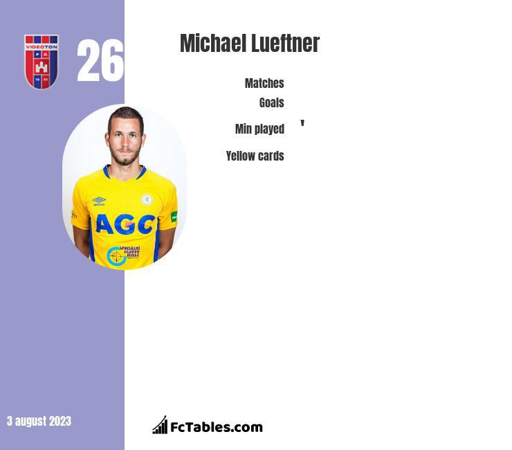 Michael Lueftner infographic