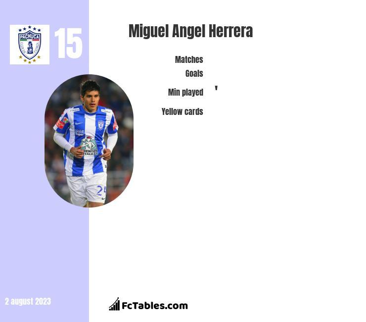 Miguel Angel Herrera infographic
