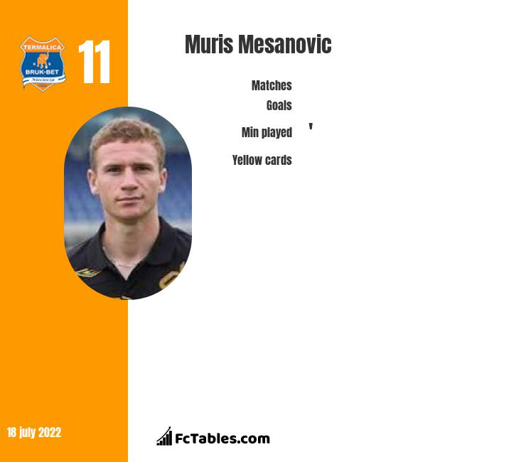 Muris Mesanovic infographic